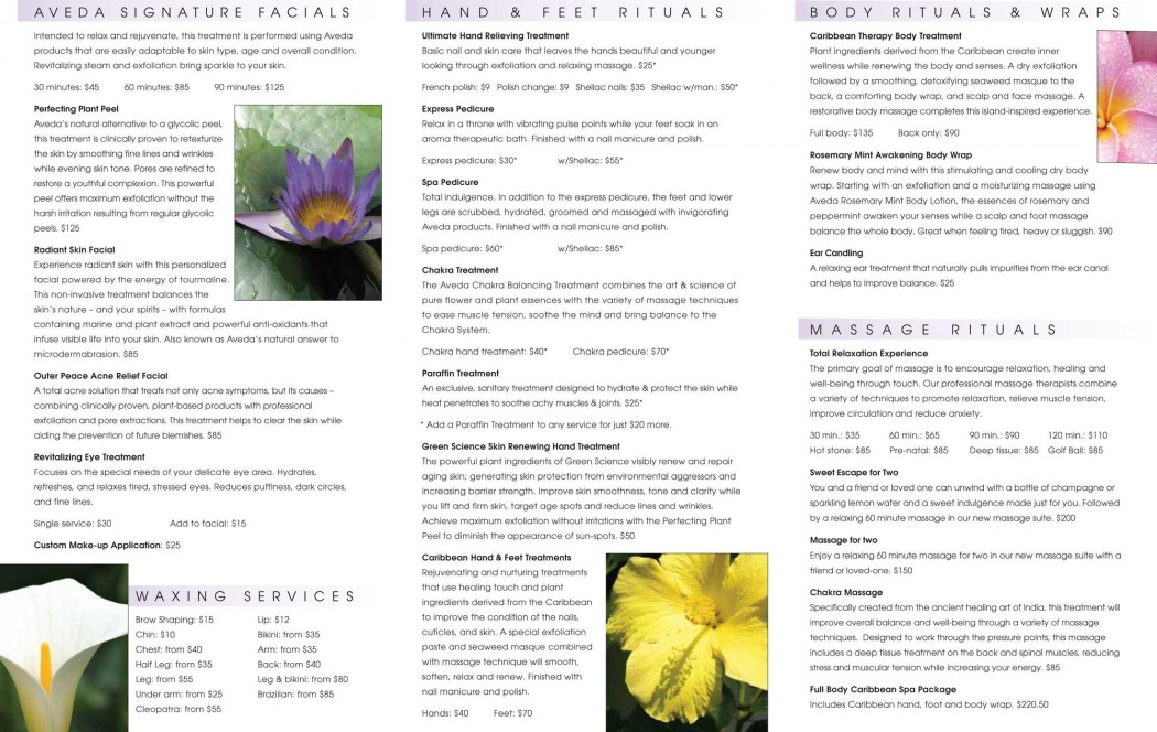 2011 H H Salon Menu Final inside